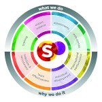 Synermetric Solution Model